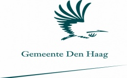 Young projectcontroller gemeente jong Financials high potentials  business controller